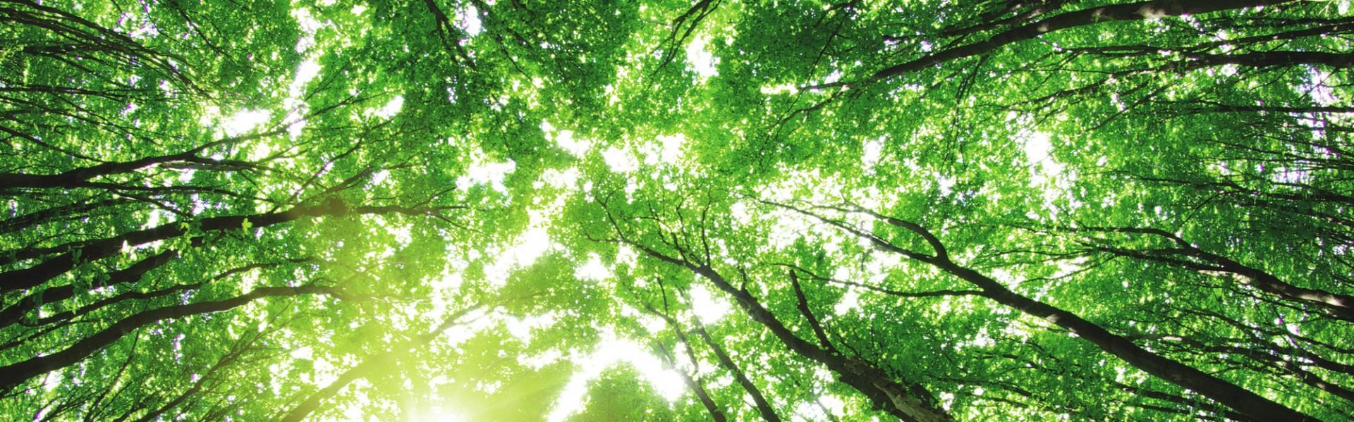 environmental-protection-insurance
