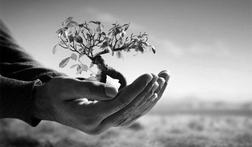 environmental_liability_insurance